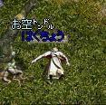 dfeed9f2.JPG