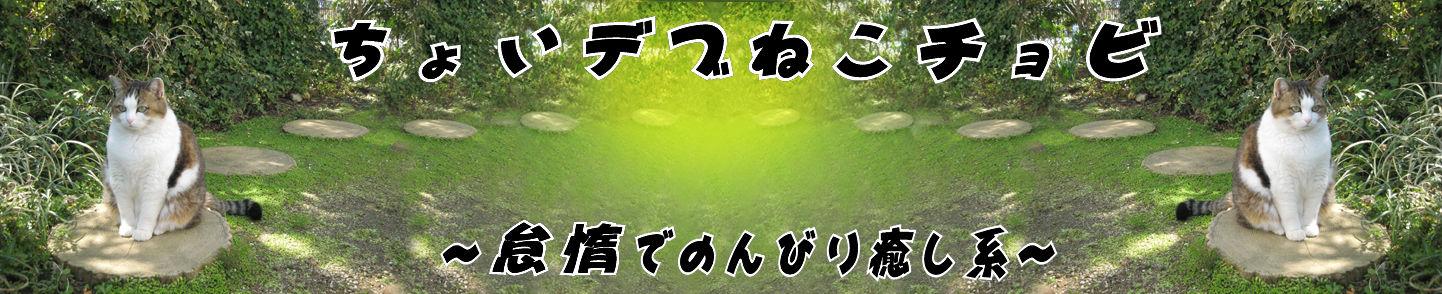 2012ちょび夏3