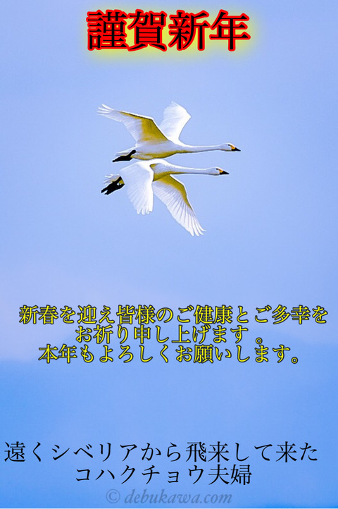 IMG_3950
