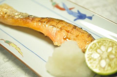 銀鮭 (14)