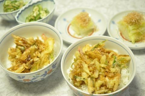 ホッキかき揚げ丼 (3)