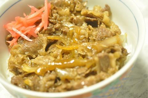 牛丼 (21)