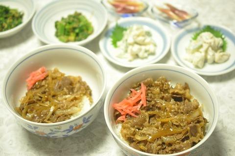 牛丼 (5)
