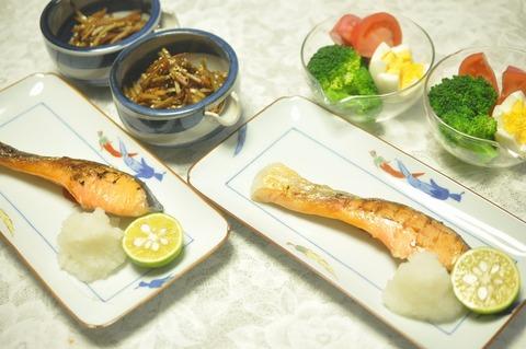 銀鮭 (4)