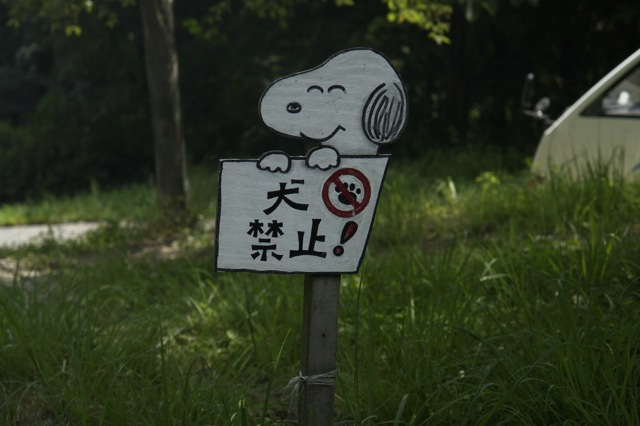 信州 松本 アルプス公園 2