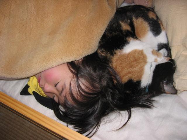 安心して眠れる場所