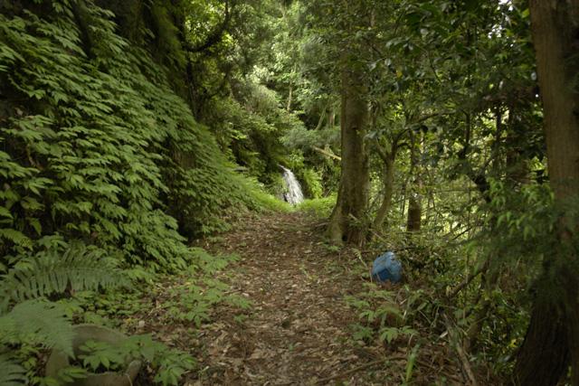 犬の散歩コース 4 古道コース その3