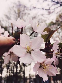セラピストブログ☆【待たれよ】