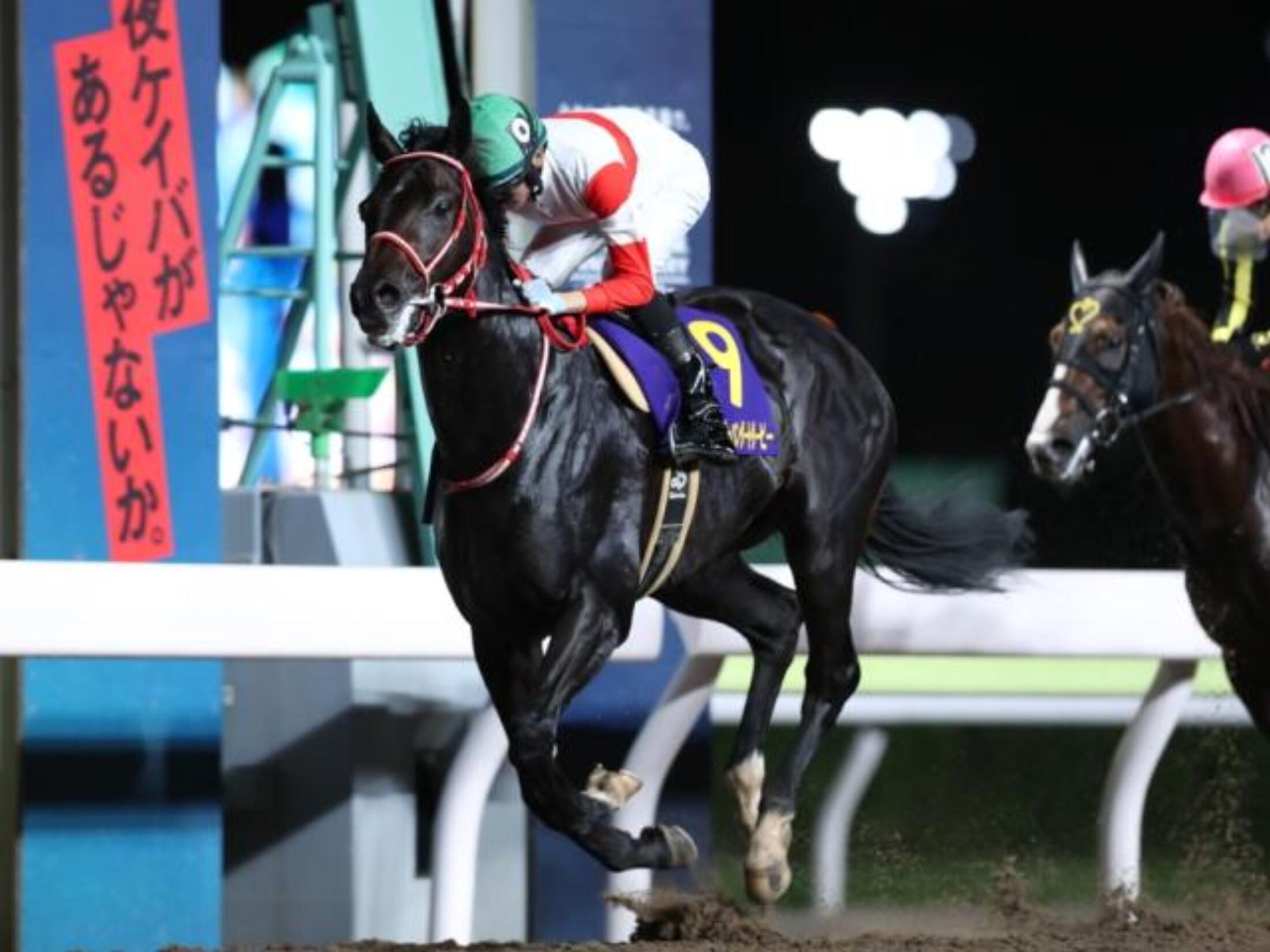 Japan_Dirt_Derby_2020