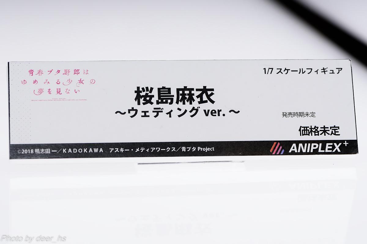 MGH2019SP-ANP-007
