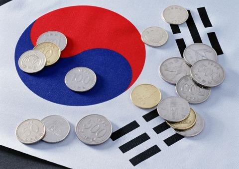韓国塵に貨幣経済なんて無理!