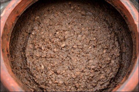 バ韓国の味噌は汚物と同レベル