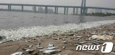 陸海空すべてが汚染されまくっているバ韓国