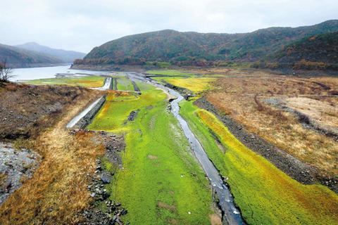 雨が降っても干上がったままのバ韓国のダム