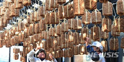 ウンコのような茶色の喰い物が好きなバ韓国塵