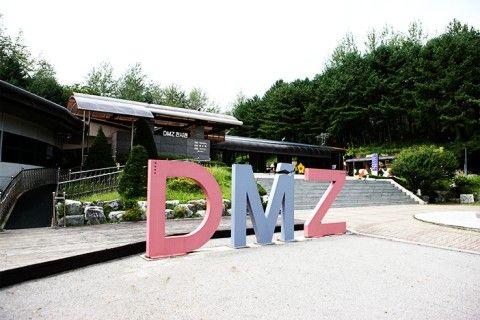 今もバ韓国が埋めた地雷だらけのDMZ