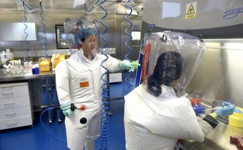 中国がバ韓国にウイルス研究所を建設か?