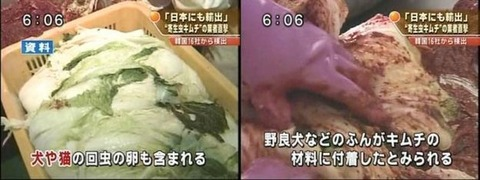 韓国塵にとって寄生虫入りのキムチはデフォです