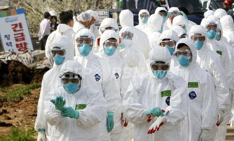 韓国でまたもや鳥インフルエンザ発生か