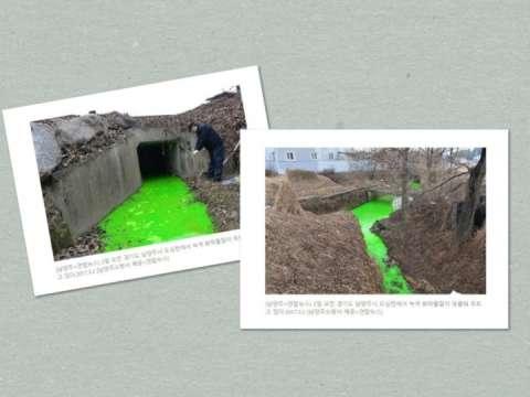 グリーンに染まったバ韓国の川