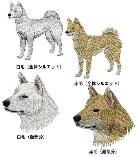 韓国塵に飼われ、そして喰われるさだめの珍島犬