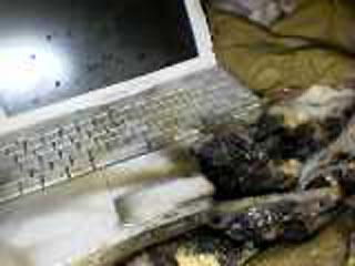 LG製のバッテリーが爆発したノートPC
