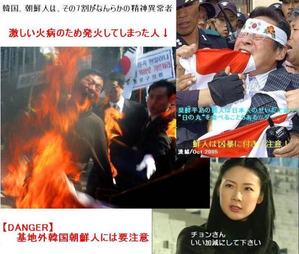 火病で発火 : やはり人類ではなかった!火病呼吸するイキモノ 韓国ネタ(なぜかマスコミでは取り上