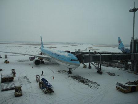 利用客の激減で閑散としている仁川空港