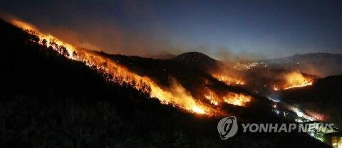 バ韓国各地で山火事発生