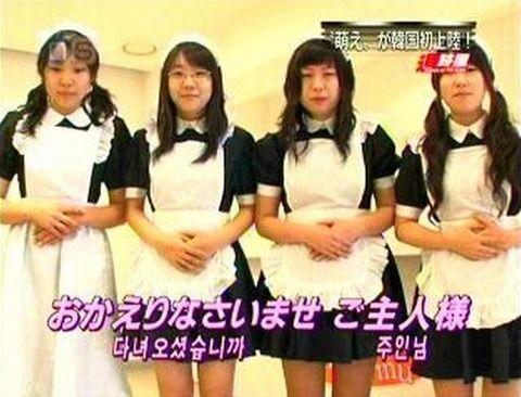バ韓国が誇るメイドカフェのドブス店員