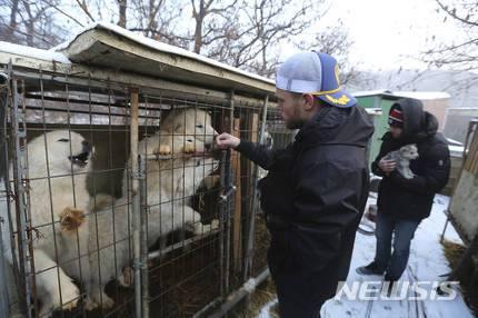 犬肉喰いをやめないバ韓国塵を37564にすべし