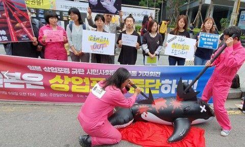 日本の商業捕鯨を糾弾するキチガイバ韓国塵ども