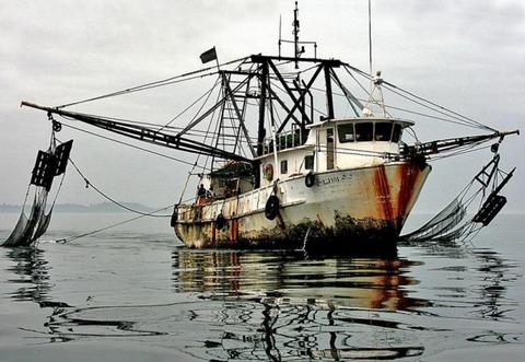 韓国の漁船は見かけ次第沈めましょう!