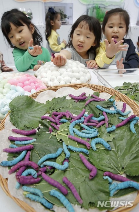 世にも醜いバ韓国塵の幼獣