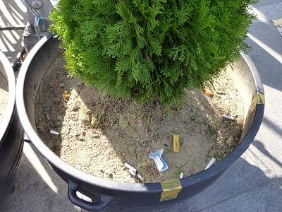 ソウルの花壇や植木鉢は灰皿状態wwww