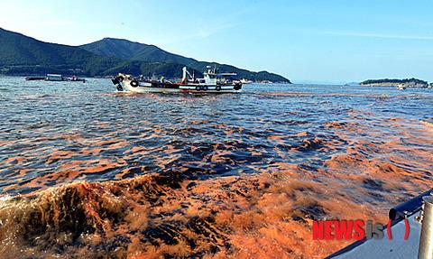 赤潮とウンコだらけの韓国近海