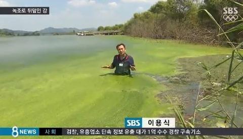 バ韓国の河川は魚も住めない汚染レベルに