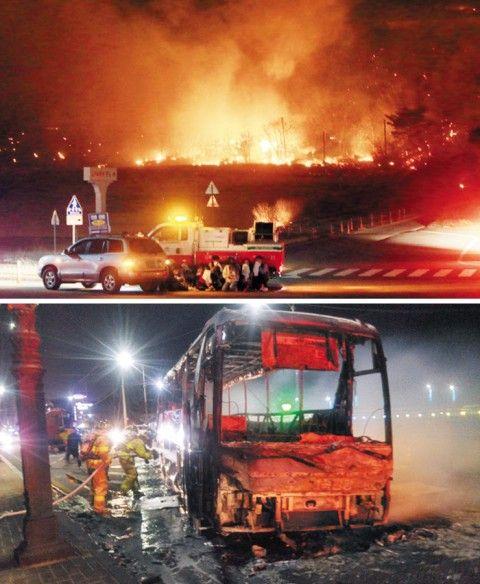 バ韓国で山火事発生