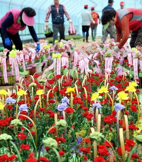 税金で育てられた花を低所得者に配るバ韓国wwww