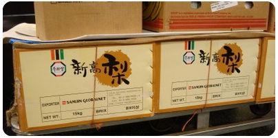 日本産と偽装する韓国の新高梨