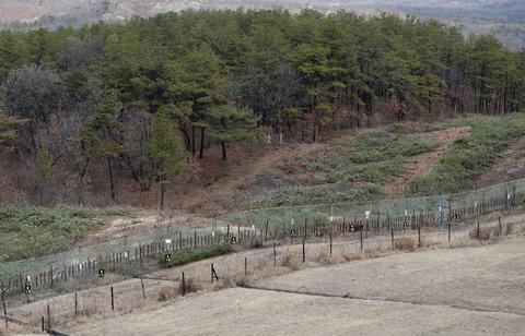 非武装地帯で地雷が爆発