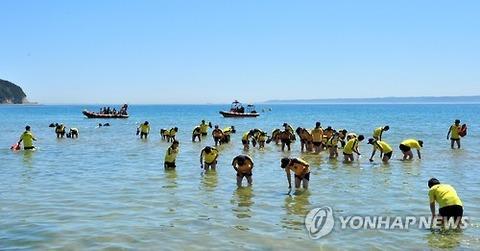 母なる海を汚染する屑朝鮮ヒトモドキども