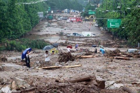 バ韓国の山崩れは文在寅災害だった