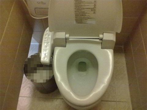 使用済みトイレ紙をオヤツにするバ韓国塵