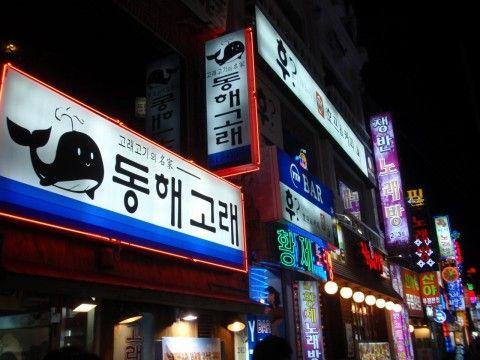 クジラ肉専門店が立ち並ぶバ韓国