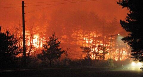 バ韓国の山火事、強風で消火できず