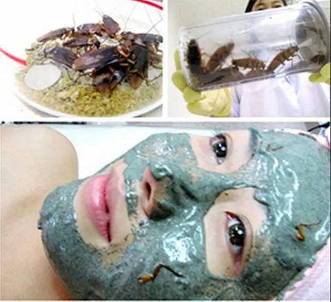 バ韓国の化粧品はヒトモドキ専用です