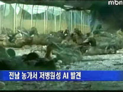 韓国人にだけ発病するインフルエンザがあればいいのに