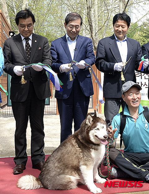犬をイジメて喜ぶバ韓国塵どもに死を!
