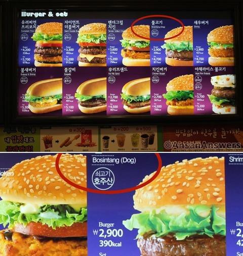 バ韓国のマックでは犬肉バーガーが!!